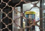 La griglia dei libri - Rovigo, la storica libreria Pavanello chiude e si trasferisce (Biasioli)