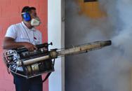 Zika, spunta il quarto caso in Veneto �Tutti tornati da zone a rischio�