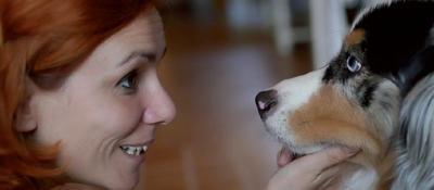La scoperta del laboratorio padovano'cani riconoscono padroni dagli occhi'
