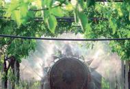 Prodotti fitosanitari in commercioArriva la prima sanzione a Belluno