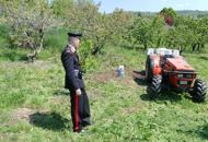 Pensionato muore schiacciatodal trattore tra i filari di viti