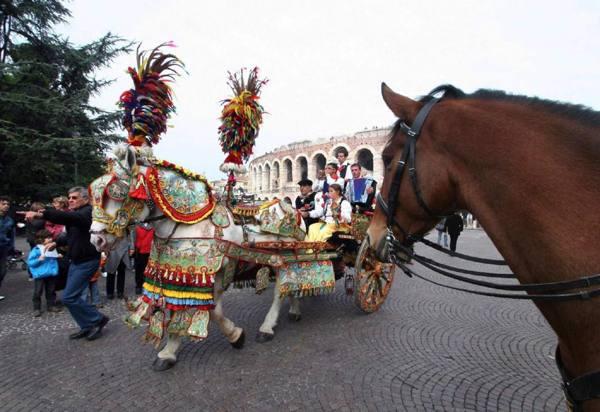 Veronafiere arriva fieracavalli omaggio al mondo equestre for Verona fiera