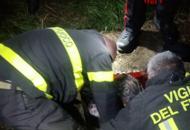 Incastrati per ore in una bucaI vigili salvano cacciatore e cane