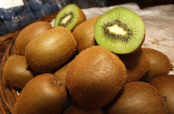 L'annata boom del kiwi veronese