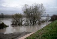 La piena del Po preoccupa il VenetoLa Regione: «Stato di allerta»