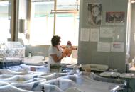 «Dichiarò il falso»: bimba disabile dopo il parto, denunciata diabetologa