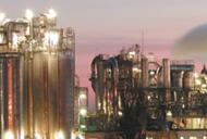 Truffa della pesa alla «Cargill» Sei condanne, una a un dipendente