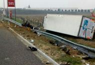 Schianto in A4 tra Padova e VicenzaDue auto e tir coinvolti: 4 feriti