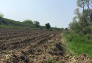 Siccità, stato di crisi in Veneto