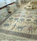 Mosaici, olivi sacri in memoria di Mosè
