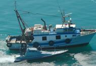 Pesca illegale: nei guai 6 pescherecci Maxi multe e sequestro attrezzatura