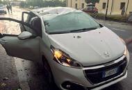 Maltempo in provincia di TrevisoAlbero crolla su un auto in corsa