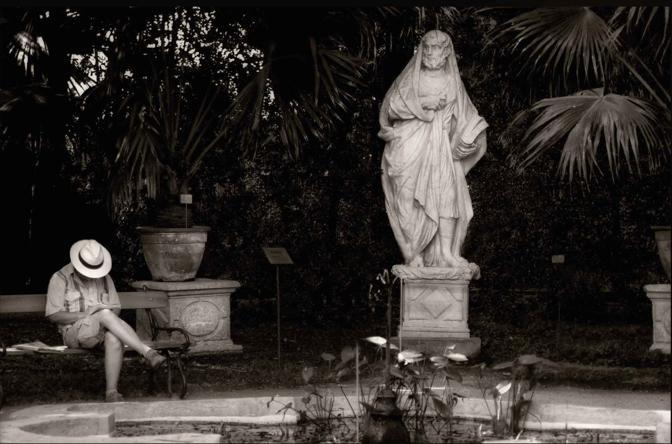 Foto scattata una mattina di agosto di qualche anno fa… per trovare un po' di quiete e di silenzio. Via Orto Botanico, Padova