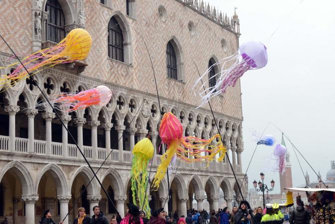 Meduse aquilone a San Marco