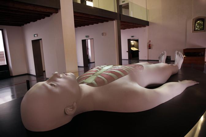 Padova, apre il Museo della Medicina