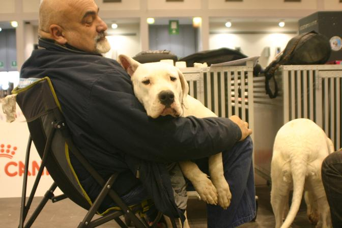 I cani alla fiera di padova corriere veneto for Fiera arredamento padova