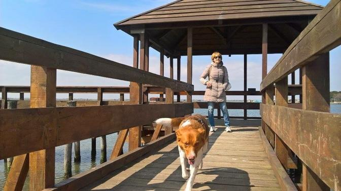 La scrittrice Gigliola Alvisi con il cane Macchia adottato dal Rifugio di Rubano (Foto Michele Maran)