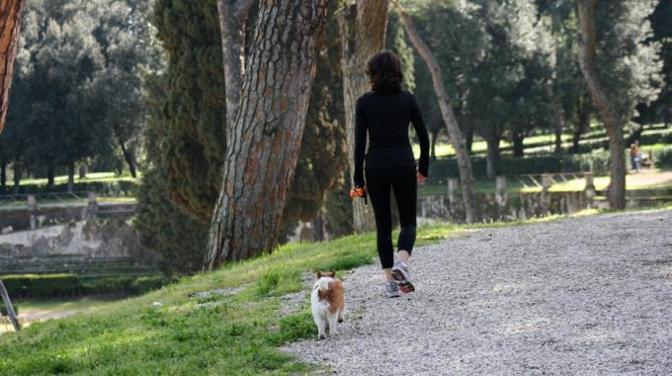 Tra la natura, a passeggio, per riscoprire e rinsaldare il legame uomo e cane