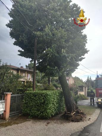 L'intervento dei vigili del fuoco a Camposampiero