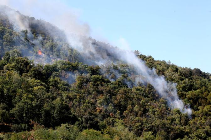 Incendio fra Calaone ed Este sui Colli Euganei