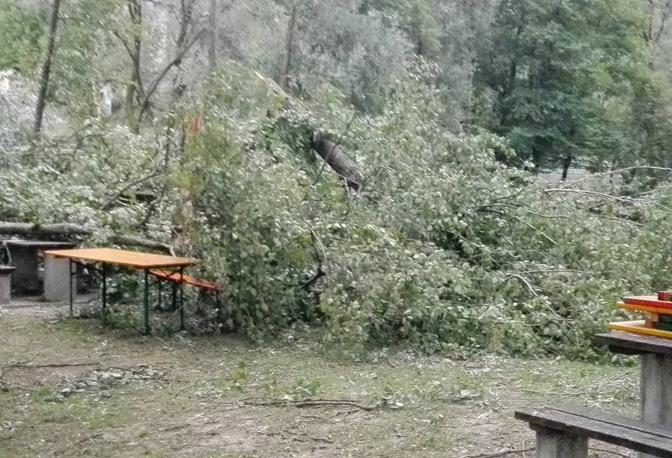 Gli alberi sradicati dal forte vento sono caduti sopra il tendone della sagra a Marziai di Lentiai