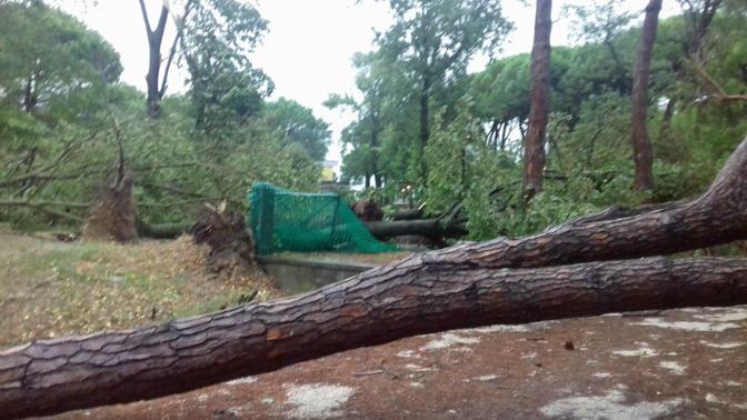 Danni nelle aree degli ospedali di Jesolo, San Donà di Piave e Portogruaro